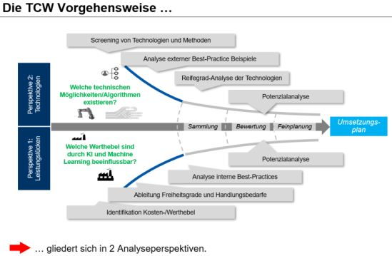 TCW Analyseperspektive