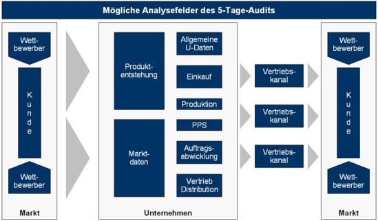 Mögliche Analysefelder des 5-Tage-Audits