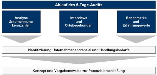 Ablauf des 5-Tage-Audits