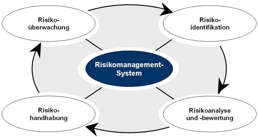 Abb 1 risikomanagement system