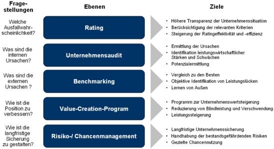 Ebenen und Ziele des Risikomanagement-.Prozesses