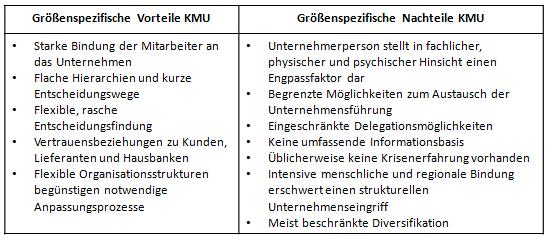 Spezifische Vor- und Nachteile von KMU in Anlehnung an Kolb (2006), S. 34.